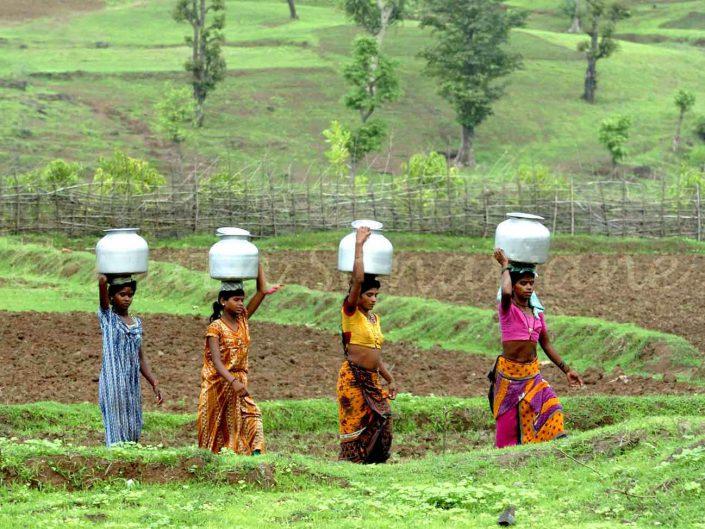 Village Life Experience in Maharashtra